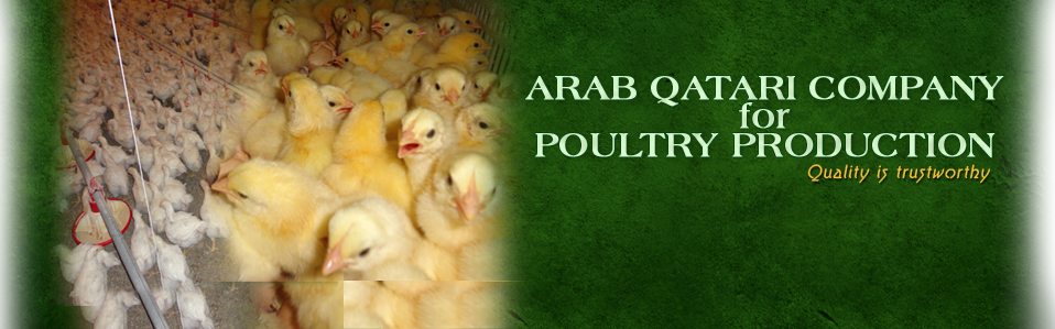 Welcome To Arab Qatari For Poultry Production